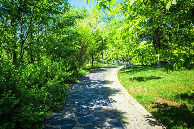 Meer bomen in stads- en dorpskernen Vlaamse Ardennen en omstreken